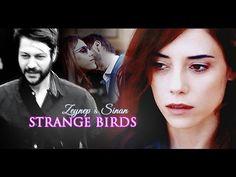 Strange birds ❖ Zeynep & Sinan | anne