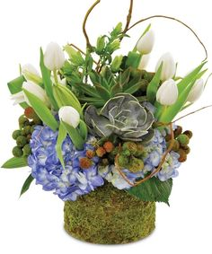 Succulent Spring by Rose Bud Flowers and Gifts Chickasaw AL