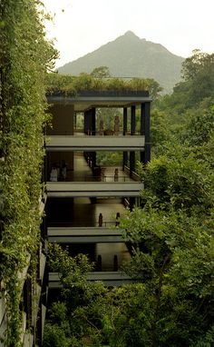 Designed by Sri Lanka's best-known architect, Geoffrey Bawa, the Kandalama hotel was built as an environmental hotel. The jungle outside is free to climb the walls of the hotel, and in the rooms the life of the jungle is literally at the fingertips. Photo by victoryrock via flickr