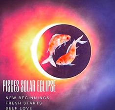 Solar Eclipse & New Moon in Pisces | Just Write #JustPickUpANotepad