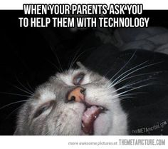 Every time my parents need help…
