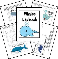 FREE Whales Lapbook - Frugal Homeschool Family