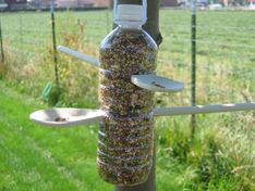 Piggy banks and curly tailed pencil holders make use of for How to make a bird feeder using a plastic bottle