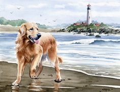 GOLDEN RETRIEVER At The Beach Dog Watercolor Art Print Signed by Artist D J Rogers. $12.50, via Etsy. WANT WANT WANT-- combines my three fav things in the world- goldens and lighthouses and beach!!!!!!!!!!1