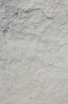 Texture concrete wall: can be used as background architecture, background…