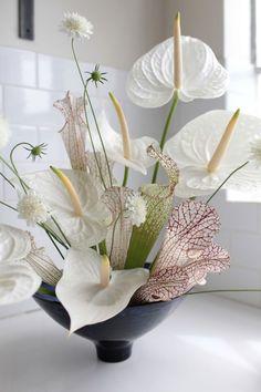 Red Anthuriums - photographed by Sophia Moreno-Bunge for Gardenista Arreglos Ikebana, Hotel Flowers, Fleur Design, Corporate Flowers, Design Floral, Flower Vases, Flower Bouquets, Bridal Bouquets, Purple Bouquets