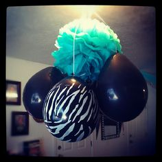 Teal,zebra print ballons and tissue paper to make cute pom poms.