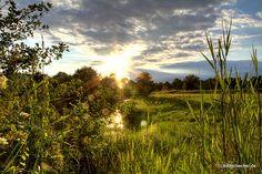 #Natur 2015 in der Nähe von Berlin unseren #Spreewald entdecken -dann bitte www.hotel-stern-werben.de