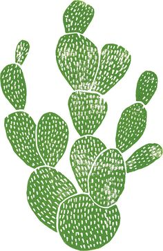 Linocut Cacti #1 by Bianca Green