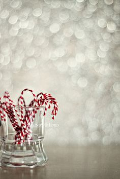 lovely picture. will definitely be putting real candy canes in a jar for decoration!