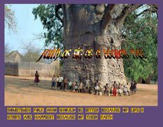 https://flic.kr/p/geuvou | Faith | Christian Music online.  Posters. www.anniewoodesgospelmusic.com Faith as big as a baobab tree. Sometimes folk who should be bitter because of life's circumstances, are happiest because of their faith.