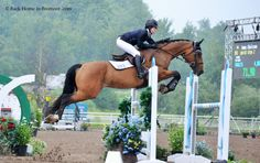 The Stud Book - backhomeinbromont: Emma Chaisson and QuickStep...