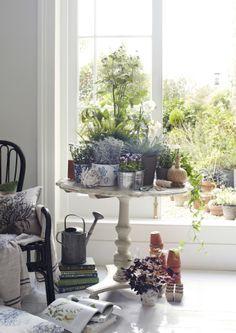 Crea una mesa de plantación en el interior para hierbas, plantas y flores.