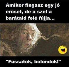 Humoros képek Gandalf, Funny Pins, Puns, Haha, Harry Potter, Jokes, Anime, Stupid, Halloween