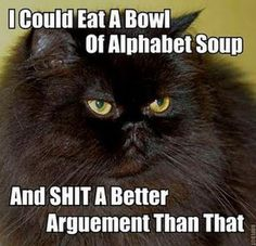I do apologize for the profanity in this post. I repinned not for the words, but for the look on that cat's face. It's my Minnie me with long hair!