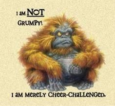 not grumpy cheer - challenged I Love To Laugh, Make Me Smile, Funny Jokes For Adults, Just For Laughs, Laugh Out Loud, Laugh Laugh, The Funny, Laughter, At Least