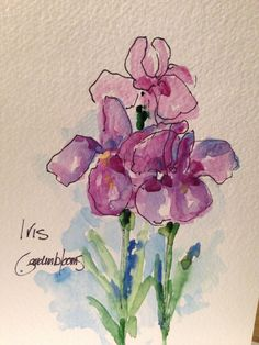 Beautiful Iris Watercolor Card by gardenblooms on Etsy
