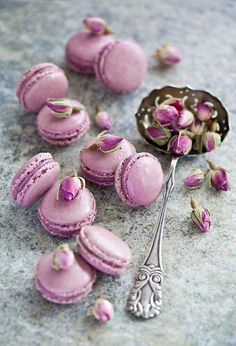 #lilac #macarons