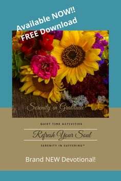FREE Gratitude devotional. Serenity in Gratitude is designed to bring peace and serenity through gratitude. The activities are meant to create ease in expressing gratitude, without imposing expectations. Each week focuses on a unique aspect of gratitude, Don't miss this opportunity for a fresh look at gratitude! #gratitude #grateful #thankful #blessed #anxietyrelief #selfcare #peace #calm #mindfulness