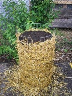 """A """"potato tower"""" - grow potatoes in a vertical space, save your garden space. Kids should think this is pretty interesting too...."""