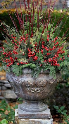 Christmas Urns, Christmas Planters, Christmas Garden, Christmas Arrangements, Outdoor Christmas Decorations, Winter Christmas, Christmas Wreaths, Christmas Crafts, Winter Decorations