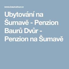 Ubytování na Šumavě - Penzion Baurů Dvůr - Penzion na Šumavě