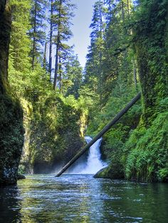 Eagle Creek - Oregon
