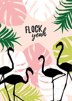 'Flock yeah' printable flamingo wall art - click through for your free poster! Flamingo Party, Flamingo T Shirt, Flamingo Logo, Deco Surf, Wal Art, Flamingo Wallpaper, Pink Flamingos, Flocking, Printable Wall Art