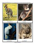 Australia: Free Animals cards