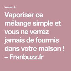 Vaporiser ce mélange simple et vous ne verrez jamais de fourmis dans votre maison ! – Franbuzz.fr