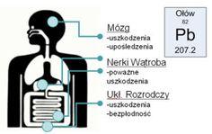 http://www.akademiawitalnosci.pl/jak-usunac-olow-z-organizmu-tanio-i-skutecznie/