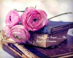 Rosas y libros