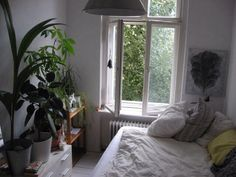 Big window by the bed
