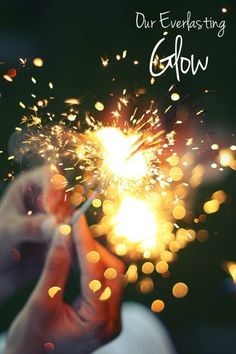 glow.yearbook theme - Google Search