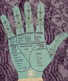 Palmistry- lines and mounds :)  I think I'd like to do one of these with my hand.