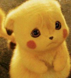 Baby Animals Super Cute, Cute Kawaii Animals, Cute Wild Animals, Baby Animals Pictures, Cute Little Animals, Cute Animal Pictures, Cute Pokemon Pictures, Cute Cartoon Images, Cute Cartoon Drawings