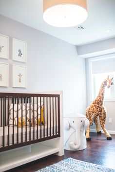 savannah dreaming this savannah baby nursery theme is perfect for