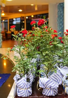 Festa O Pequeno Príncipe. Lembrancinha Original - Mudas de Mini Rosas http://www.suelicoelho.com.br/2014/06/le-petit-prince-enzo.html