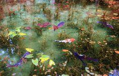 """""""Monet's Pond"""" - Seki City, Japan"""