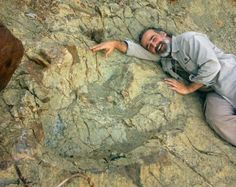 A footprint of a giant abelisaurid dinosaur found in southern Bolivia.