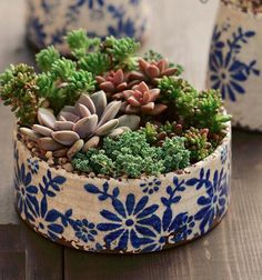 Old world set of 2 different shaped blue and white floral ceramic pots - Succulents wedding Terrarium succulentes Succulent Gardening, Succulent Pots, Cacti And Succulents, Planting Succulents, Container Gardening, Succulent Care, Ceramic Flower Pots, Ceramic Pots, Cactus Ceramic