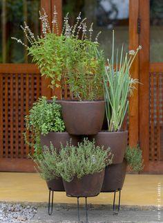 Ideas Apartment Balcony Garden Vegetables Planters For 2019 Vegetable Planters, Vegetable Garden, Patio Plants, Indoor Plants, Edible Garden, Garden Pots, Herbs Garden, Small Gardens, Outdoor Gardens