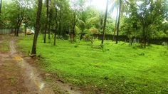 Land & Plots   6 cent Residential plot Near Mundur,Thrissur