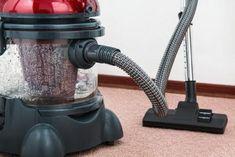 a vacuum cleaner cleaning carpet Steam Cleaners, Vacuum Cleaners, Cleaning Appliances, Steam Mop, Home Repair, Vacuums, Wet Vacuums, Home Improvement, House Remodeling