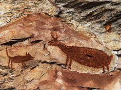 Pinturas nas cavernas mostram o cotidiano do homem pré-histórico.