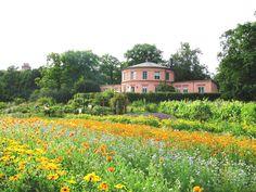 Rosendals trädgård, Djurgården, Stockholm, Sweden