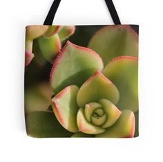 'succulents' Tote Bag by shotbysas . Iphone Wallet, Iphone Cases, Buy Succulents, New Bag, Bag Sale, Ipad Case, Chiffon Tops, Framed Prints, Tote Bag