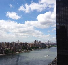 Thankful to have this view from my terrace in #newyorkcity, it's where I do my writing and research!