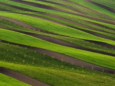 Picture of rolling green fields in southern Moravia, Czech Republic. Undulating fields tell an agricultural tale in Moravia, a region in the Czech Republic that's known for its folk traditions, architecture, and landscapes. What A Beautiful World, Beautiful Places, Photo Texture, Green Fields, Patterns In Nature, Birds Eye View, National Geographic Photos, Color Of Life, Places Around The World
