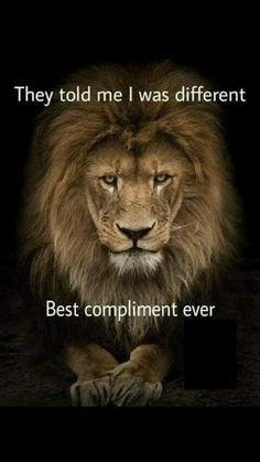 Lion is the king of the jungle and a Leo man is the king of the zodiac. Just find out how to attract him and become his queen. Leo Zodiac Facts, Zodiac Quotes, Pisces Zodiac, Great Inspirational Quotes, Motivational Quotes, Great Quotes, Citation Lion, Ascendant Lion, Lion Quotes